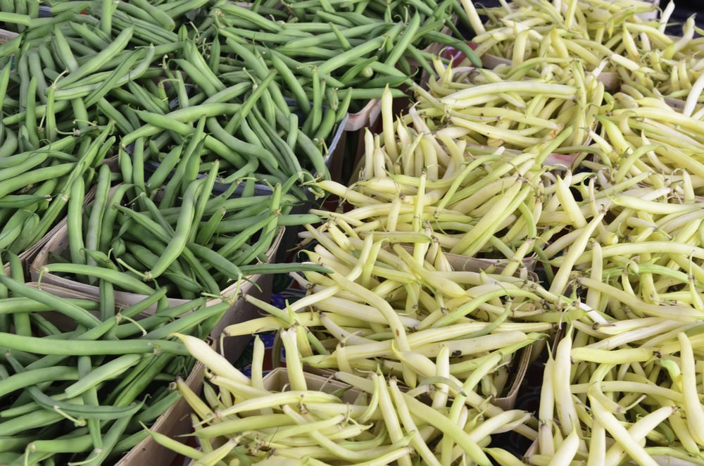 Green and wax beans (binomial name of both cultivars Phaseolus vulgaris) on display at a farmer's market